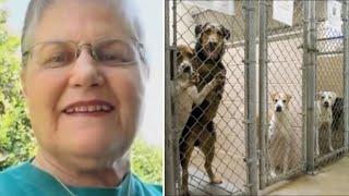 Женщина пришла в приют и попросила показать ей самого старого и ненужного пса