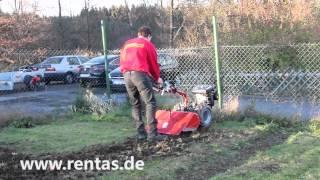 Gartenfräse mittel mieten bei Rentas, Kurzbeschreibung