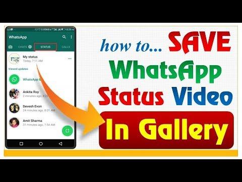 Whatsapp Trickshow To Save Whatsapp Status Video In Galleryhow To Save Whatsapp Images To Gallery
