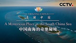 《美丽中国》 中国南海的奇绝秘境 | CCTV