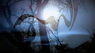 Yara ♫ Twasa Fia /يارا - توصى فيي  Arabian Beauty ↝ TBNYD13