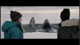 """Big Miracle"" Movie Pass"