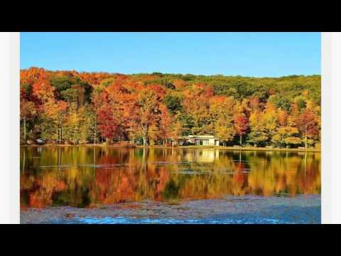 Best Drug Rehab in Pennsylvania   Just Believe Recovery Carbondale