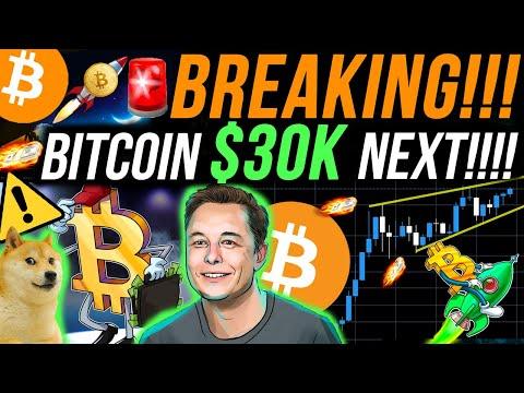 breaking!!🚨bitcoin-$30k-breakout!!!!-elon-musk-triggers-altcoin-season-backing-dogecoin!!-btc-news!