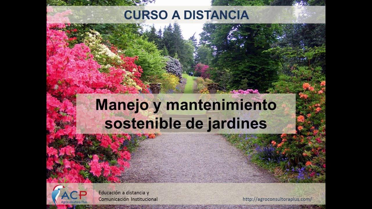 Manejo y mantenimiento sostenible de jardines curso a distancia youtube - Mantenimiento de jardines ...