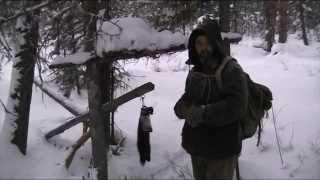 Охота на соболя капканами