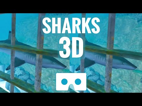 3D video Sharks VR Box Shark Cage Tank SBS Oculus Go not 360