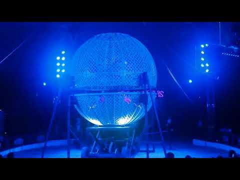 Globe of death, best circus