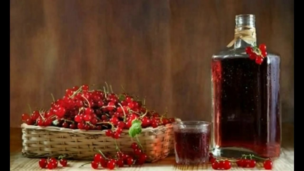 Домашнее вино из красной смородины пошагово в домашних условиях