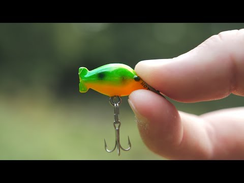 The SMALLEST Crankbait In The WORLD!!!