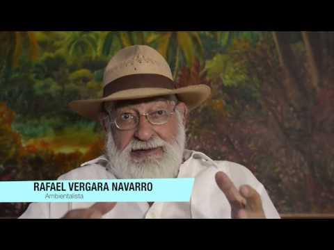 Salvemos la Virgen - RafaelVergara Navarro