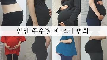 SUB [임신 주수별 배크기 변화] 초기부터 막달까지, My Pregnancy  Transformation Time Lapse