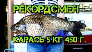 Карась рекордсмен! Самый большой карась в мире пойманный на удочку весом 5 кг. 450 гр.