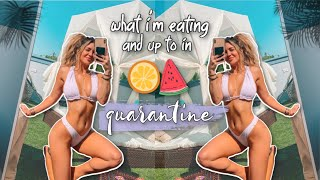 what I'm eating and doing in quarantine *grocery haul and more* *reupload*