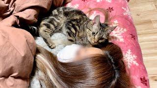眠れないと飼い主の寝室までついてきて添い寝してくる子猫w