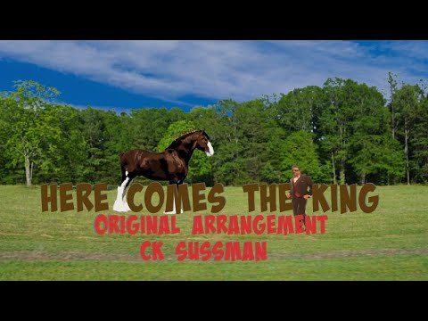 Budweiser Clydesdales- Here comes the King