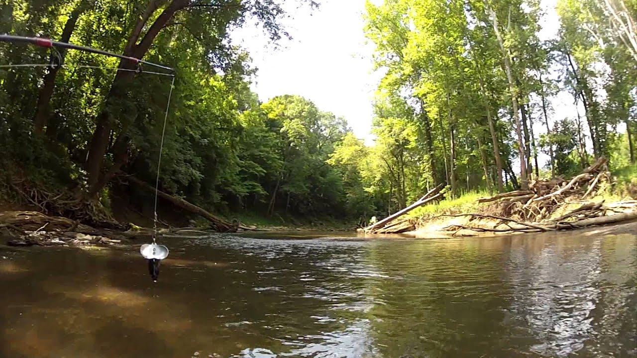 Canoe fishing and camping on the blue river indiana for Blue river fishing report