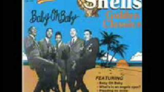 the shells- my royal love