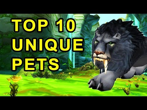 Top 10 Coolest Looking Pets In Classic WoW