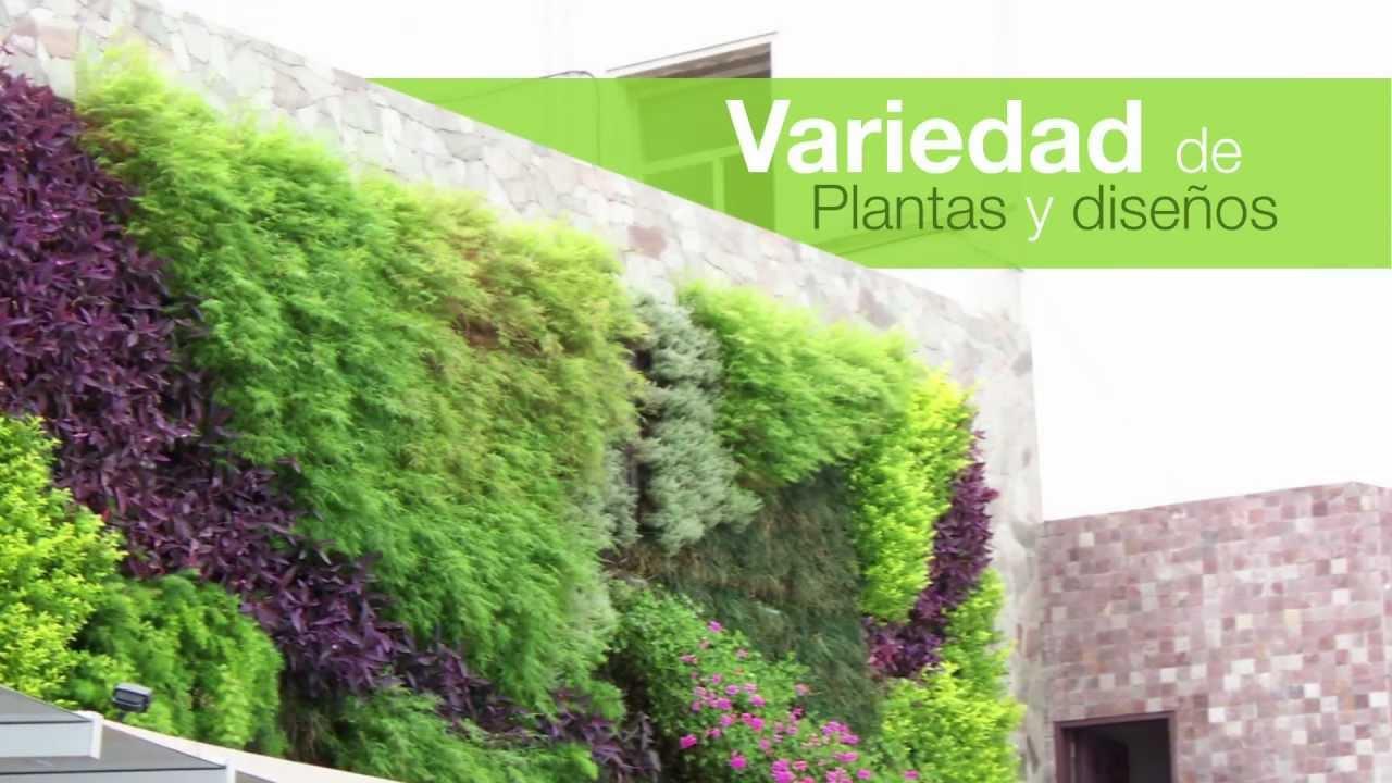 Gwall jardines verticales youtube for Jardines verticales