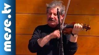 Fábián Éva: Zöld erdőben (gyerekdal, koncert részlet)