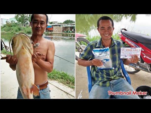 Câu cá tra bò Hồ Vĩnh lộc 2 . Cám chuyên tra T1 ghi bàn