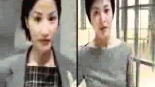 ericsson 愛立信T18(劉德華,關之琳)1999