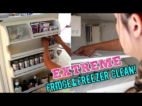 EXTREME FRIDGE & FREEZER CLEAN WITH ME 2019!