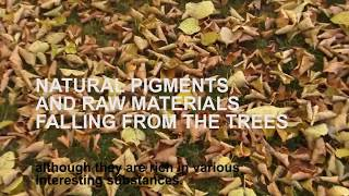 New process to extract autumn leaves