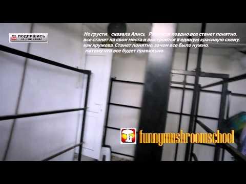 Анатолий Собчак: Тайны хождения во власть