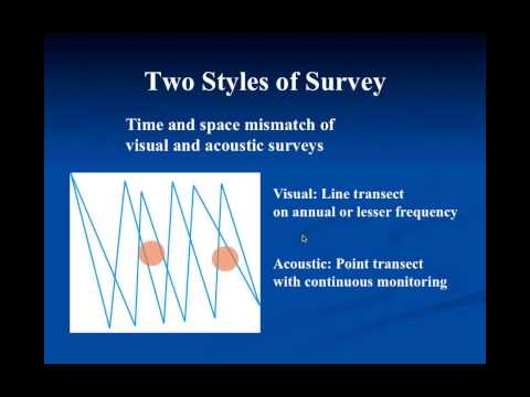 POET Webinar: Marine Mammal Acoustic Research