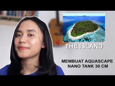 "nano-tank-30-cm-aquascape-dengan-tema-""the-island""-by-trifena-margaretha"