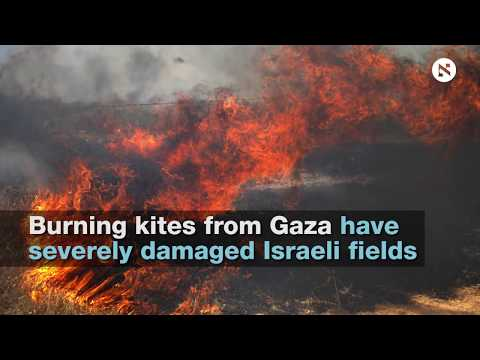 Fire Damage to Israeli Agriculture Near Gaza Border Estimated at $1.4m and Rising