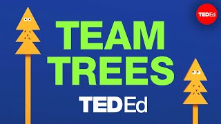 Let's plant 20 million trees together TeamTrees