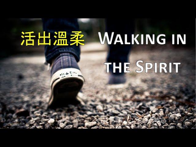 2020年9月27日主日講道:靠聖靈行事系列8 - 活出溫柔 (講道版)
