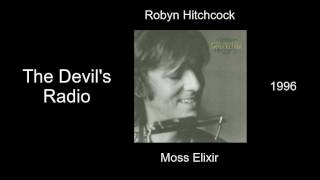 Watch Robyn Hitchcock The Devils Radio video