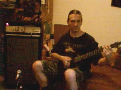 VERMONA REGENT 300N Guitar Amp