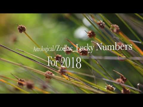 Zodiac lucky numbers 2018