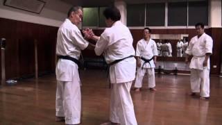 Taira Sensei Concepts 7 - Seipai Opening