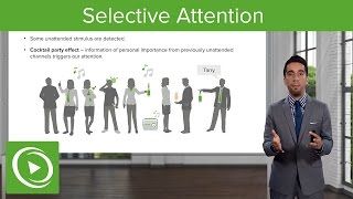 Selective Attention: Models – Making Sense of the Environment   Lecturio