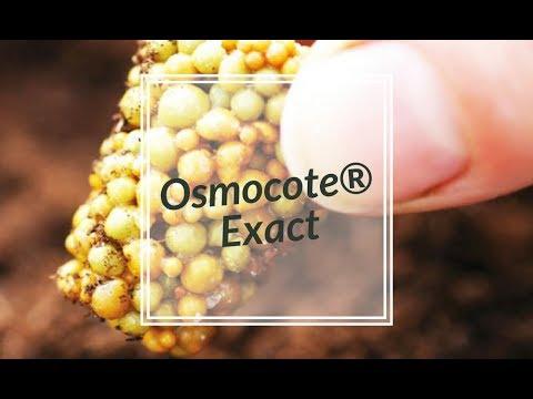 Engrais Osmocote® Exact - Jardin Express - YouTube
