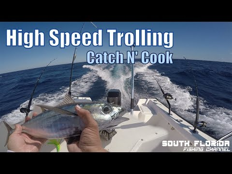 High Speed Trolling the Islamorada Humps | Catch n Cook