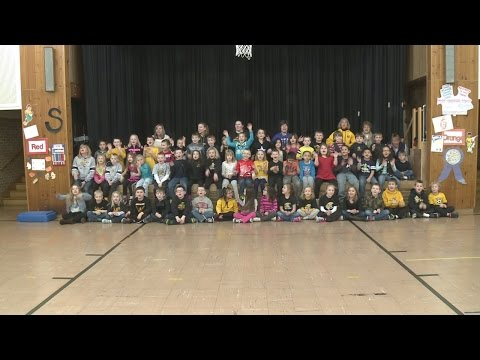 School Shout Out: Meadow View Primary School 5-26