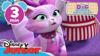 Willow's Schnurhaare - Doc McStuffins | Disney Junior Kurzgeschichten