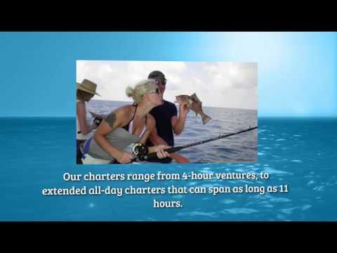 Fishing Charter & Fishing Tours In Sarasota, FL   Charter Boat Shark