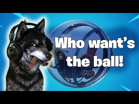 Does The Dog Have His Day?  Watch This Dog Play Fortnite Season 8