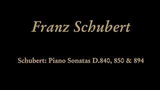 Franz Schubert - III. Menuetto. Allegro moderato
