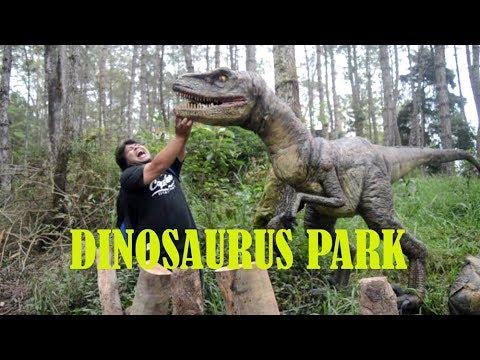 Magetan Dinosaurus Park Wahana Wisata Baru Di Mojosemi Forest Park