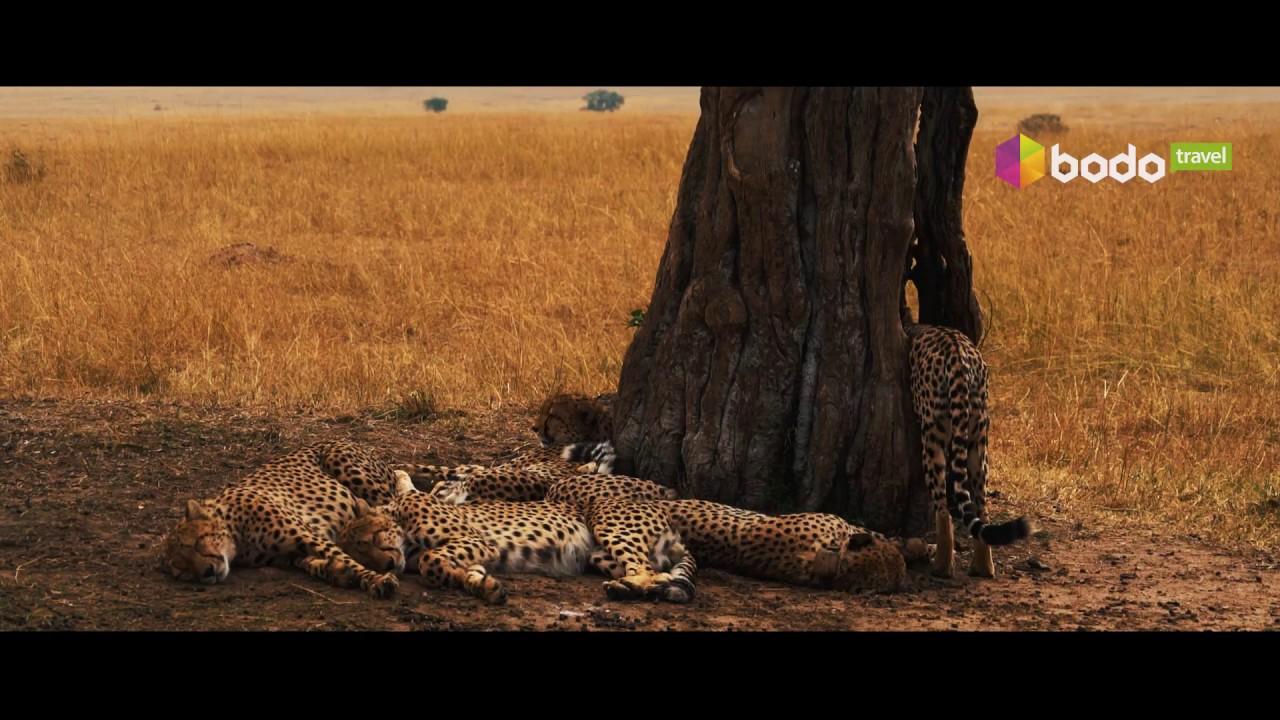 Туры в Кению, отдых в Кении, путешествие в Кению
