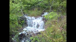 Forest Waterfall Nature Music for Relaxation, Meditation, ASMR (water sounds)